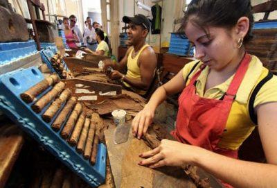 Fabrica de Tabacos Partagas Havana Cuba